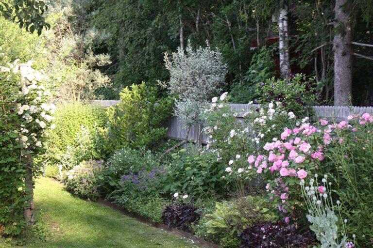 Pias Trädgård - Öppen Trädgård