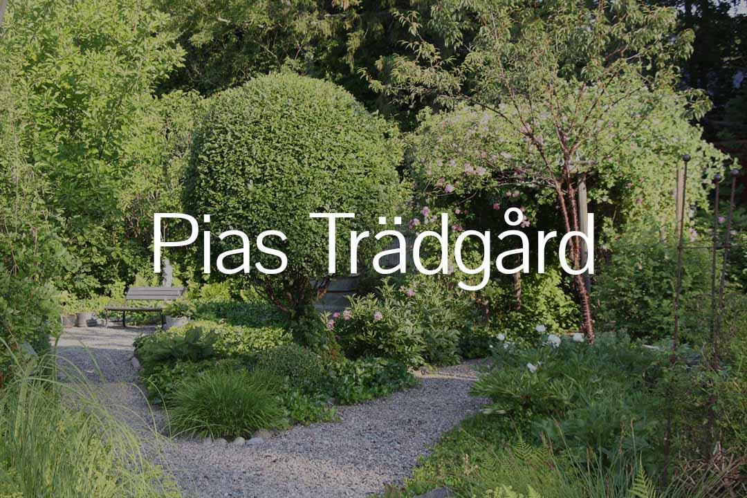 Öppna trädgårdar länk till pias trädgård