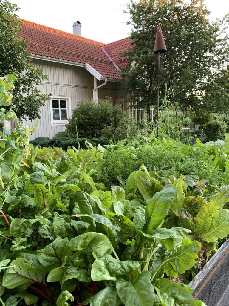 Villa Sjövik - Öppen Trädgård